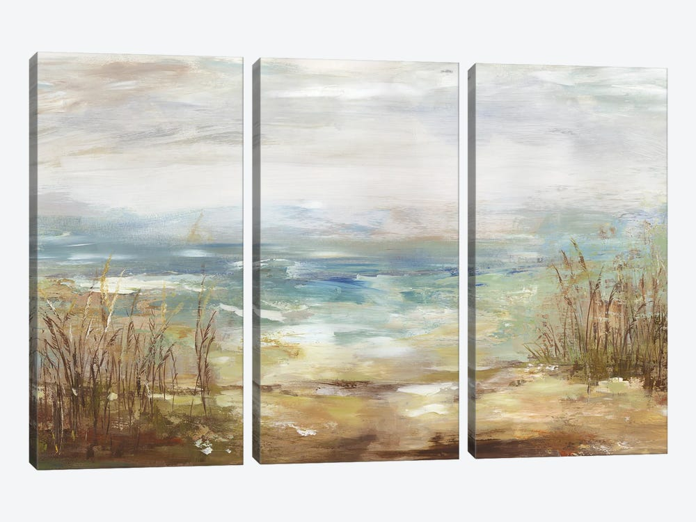 Parting Shores by Aimee Wilson 3-piece Art Print