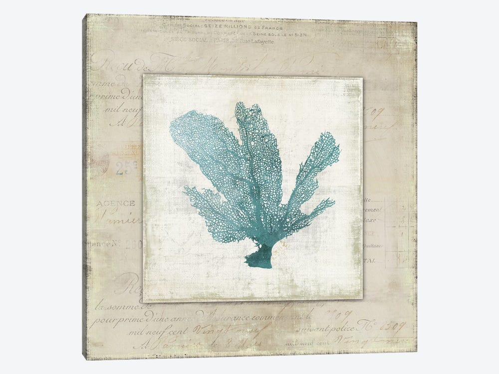 Chambray Coral I by Aimee Wilson 1-piece Canvas Artwork