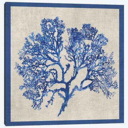 Cobalt Coral I Canvas Print #AWI61} by Aimee Wilson Canvas Art