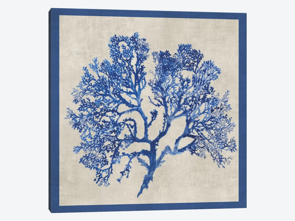 Cobalt Coral I by Aimee Wilson 1-piece Art Print