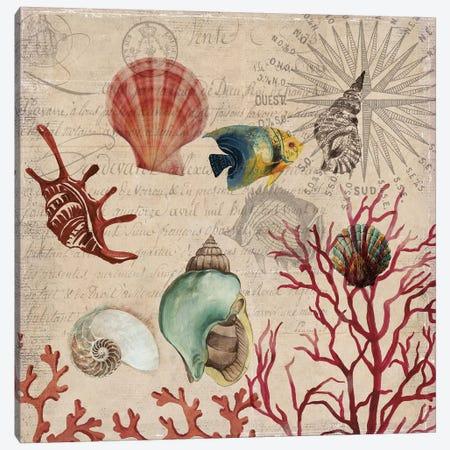 Coral I Canvas Print #AWI63} by Aimee Wilson Canvas Wall Art