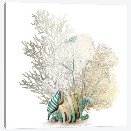 Coral II Canvas Print #AWI64} by Aimee Wilson Canvas Art Print