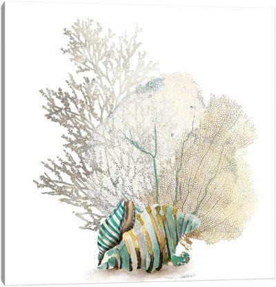 Coral II Canvas Art Print