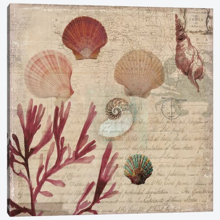 Coral III Canvas Print #AWI65} by Aimee Wilson Canvas Print