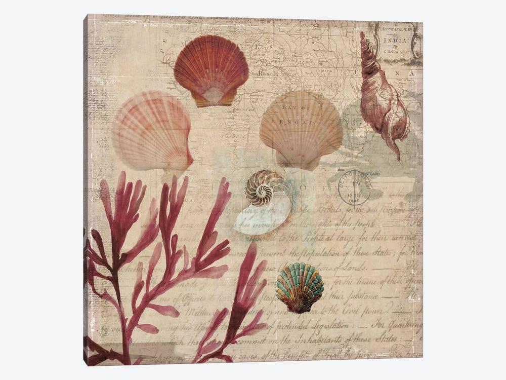 Coral III by Aimee Wilson 1-piece Canvas Print