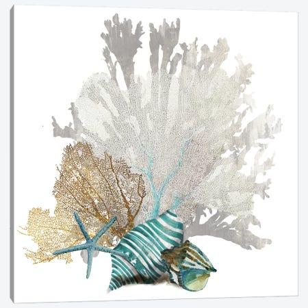 Coral IV Canvas Print #AWI66} by Aimee Wilson Art Print