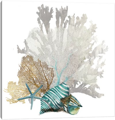 Coral IV Canvas Art Print