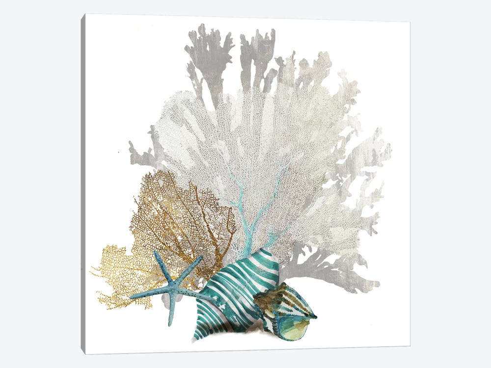 Coral IV by Aimee Wilson 1-piece Canvas Art