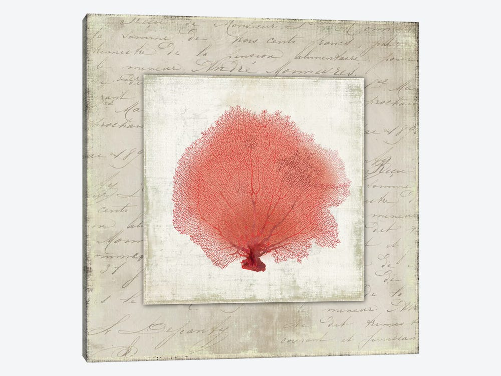 Coral Linen I by Aimee Wilson 1-piece Canvas Print