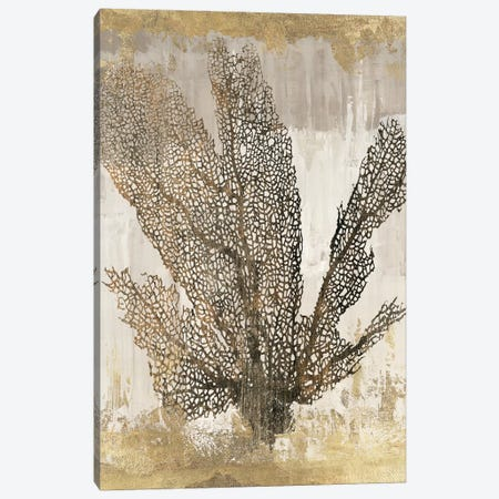 Coral Splendor I Canvas Print #AWI69} by Aimee Wilson Canvas Wall Art