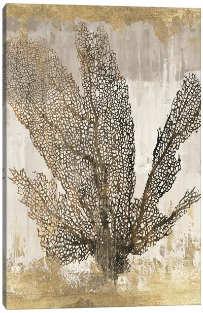 Coral Splendor I Canvas Art Print
