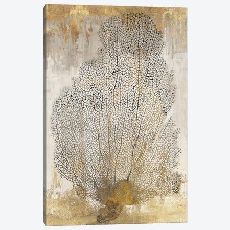 Coral Splendor II Canvas Print #AWI70} by Aimee Wilson Art Print