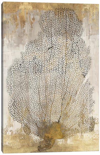Coral Splendor II Canvas Art Print