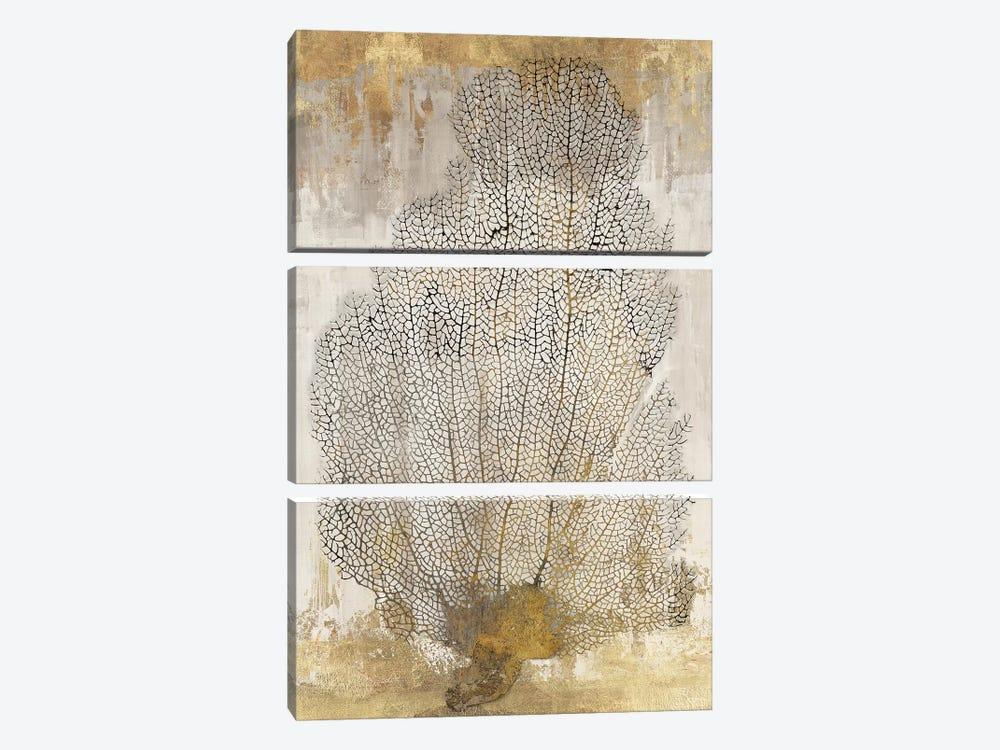 Coral Splendor II by Aimee Wilson 3-piece Canvas Art Print