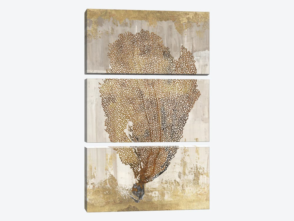 Coral Splendor III by Aimee Wilson 3-piece Canvas Art