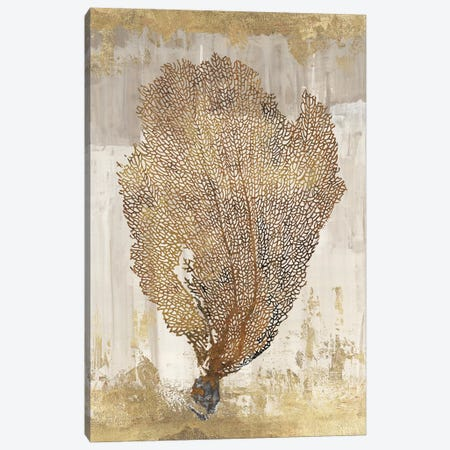 Coral Splendor III Canvas Print #AWI71} by Aimee Wilson Canvas Print