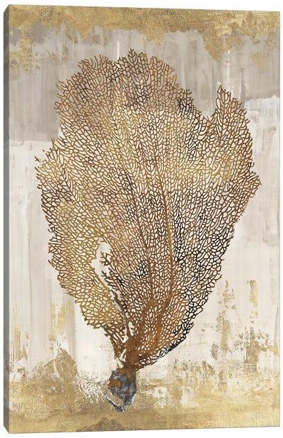 Coral Splendor III Canvas Art Print