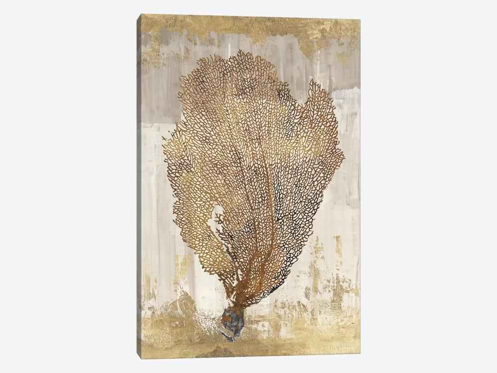 Coral Splendor III by Aimee Wilson 1-piece Canvas Artwork