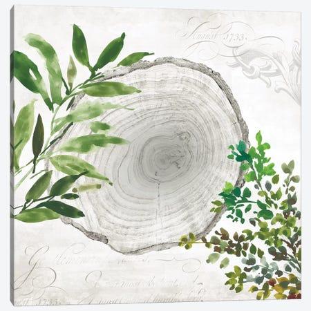 Eco II Canvas Print #AWI84} by Aimee Wilson Art Print