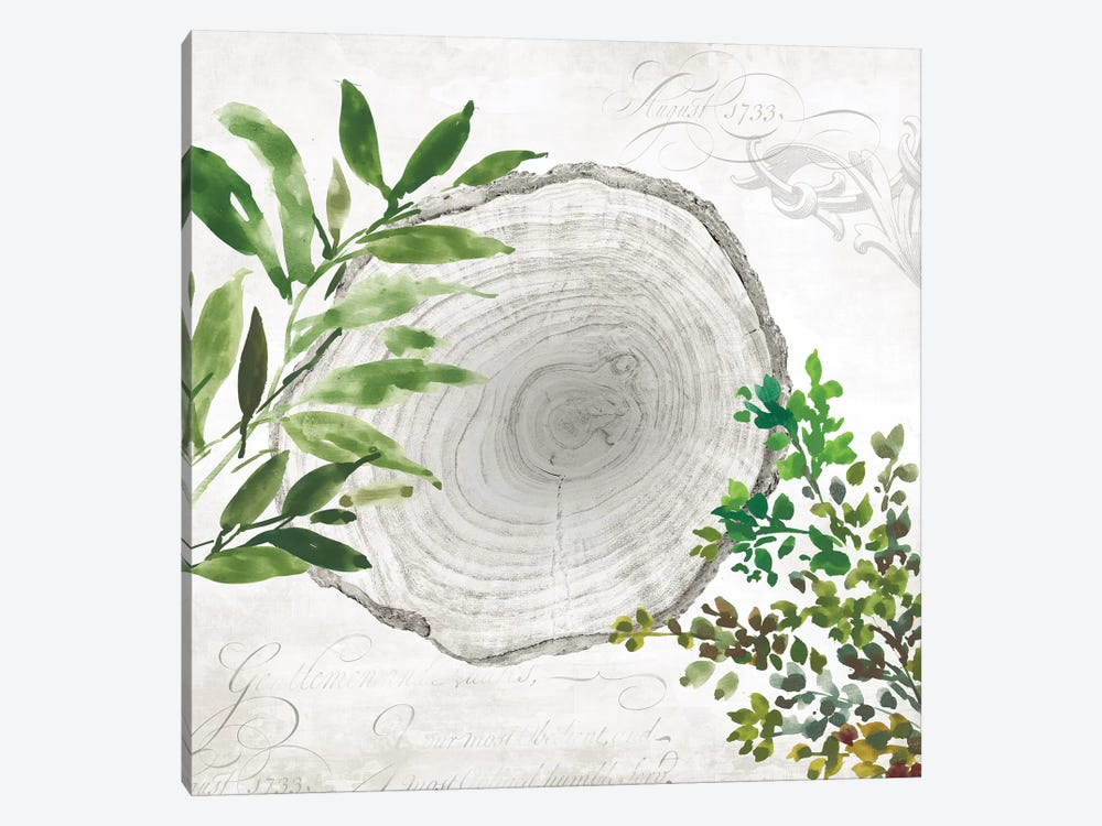 Eco II by Aimee Wilson 1-piece Canvas Artwork