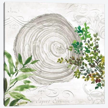 Eco III Canvas Print #AWI85} by Aimee Wilson Canvas Art Print