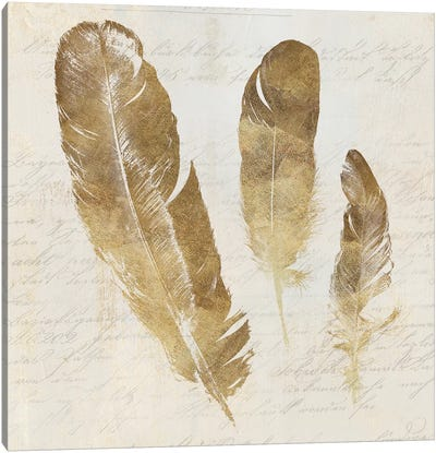 Feather Softly I Canvas Art Print