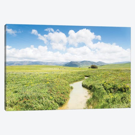 Andalucia Canvas Print #AWL119} by Andrew Lever Canvas Wall Art