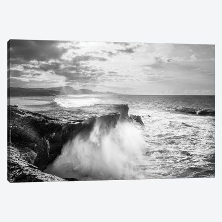 The Wild Coast Canvas Print #AWL128} by Andrew Lever Art Print