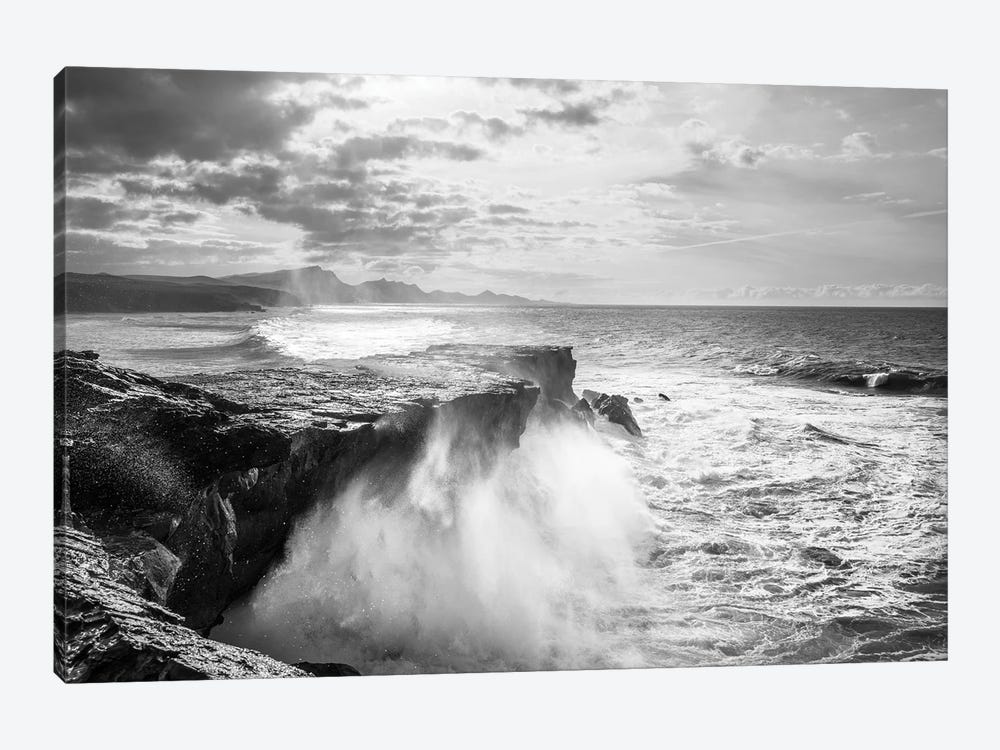 The Wild Coast by Andrew Lever 1-piece Canvas Artwork