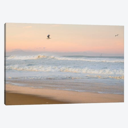 Seagulls And Surf Canvas Print #AWL133} by Andrew Lever Canvas Artwork
