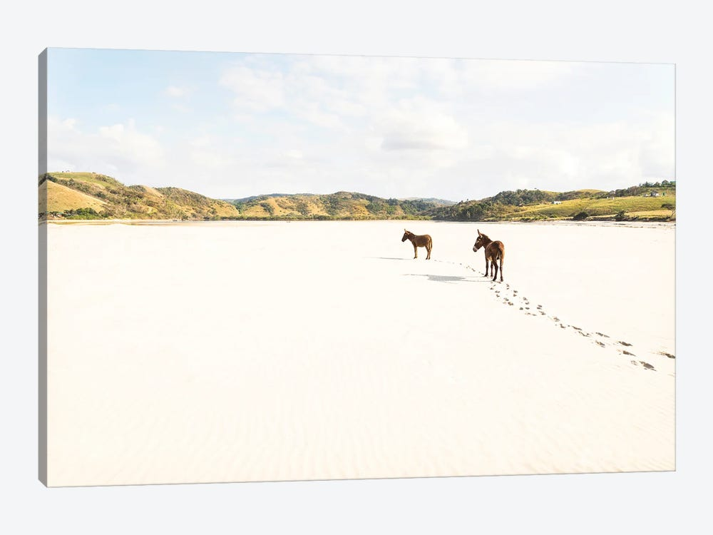 Beach Donkeys by Andrew Lever 1-piece Art Print