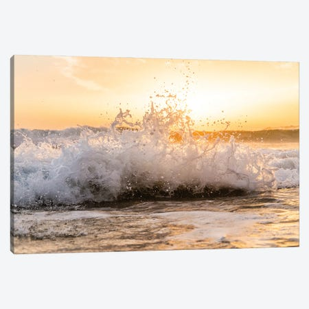 Breaking Wave Canvas Print #AWL56} by Andrew Lever Art Print