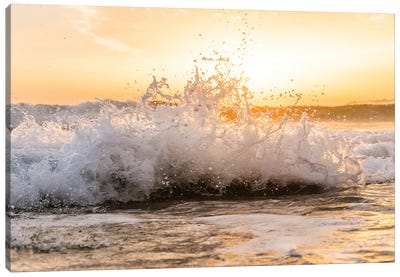 Breaking Wave Canvas Art Print