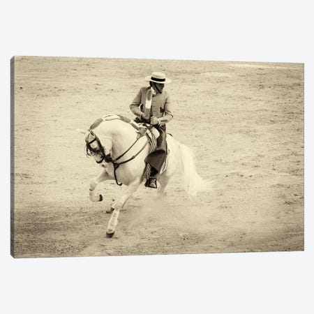 Spanish Horseman Canvas Print #AWL79} by Andrew Lever Canvas Artwork