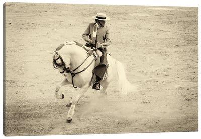 Spanish Horseman Canvas Art Print