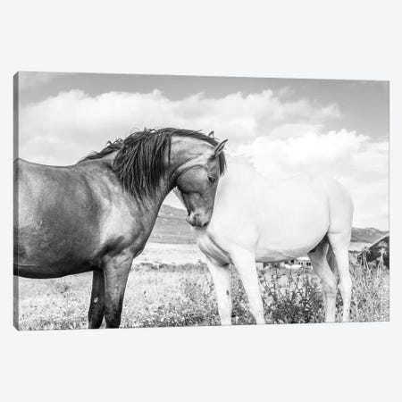 Together Canvas Print #AWL82} by Andrew Lever Canvas Print