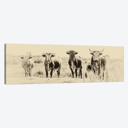 The Gang Canvas Print #AWL9} by Andrew Lever Canvas Print