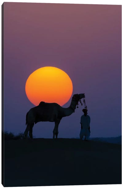 Camel and person at sunset, Thar Desert, Rajasthan, India Canvas Art Print