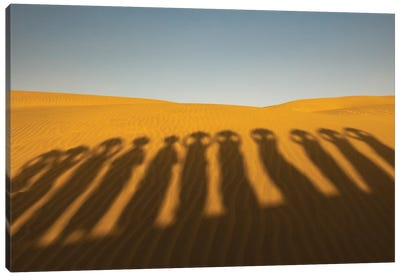 Shadows of waterbearers, Thar Desert, India Canvas Art Print