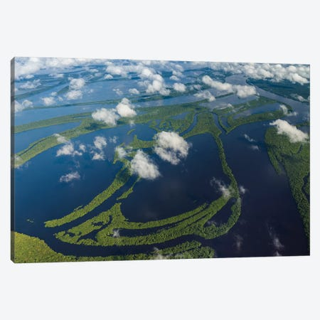Aerial of Amazon River Basin, Manaus, Brazil II Canvas Print #AWO6} by Art Wolfe Art Print