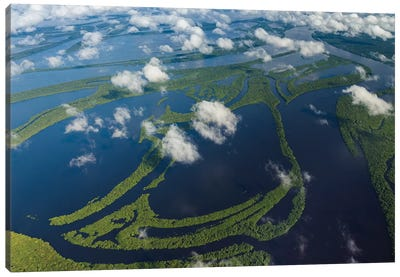 Aerial of Amazon River Basin, Manaus, Brazil II Canvas Art Print