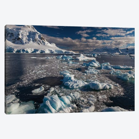 Antarctic Peninsula, Antarctica Canvas Print #AWO7} by Art Wolfe Art Print