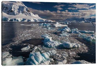 Antarctic Peninsula, Antarctica Canvas Art Print