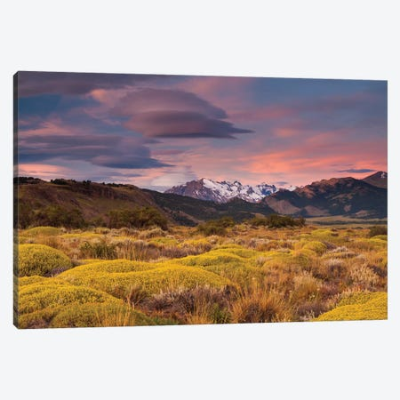 Argentina, Patagonia landscape Canvas Print #AWO8} by Art Wolfe Canvas Art