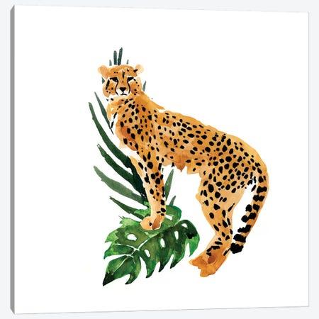 Cheetah Outlook II Canvas Print #AWR10} by Annie Warren Canvas Art