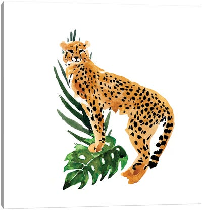 Cheetah Outlook II Canvas Art Print