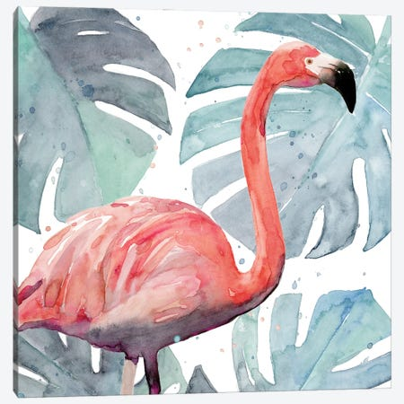 Flamingo Splash I Canvas Print #AWR115} by Annie Warren Canvas Art Print