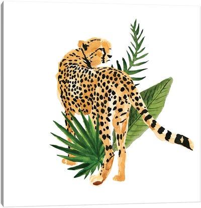 Cheetah Outlook III Canvas Art Print