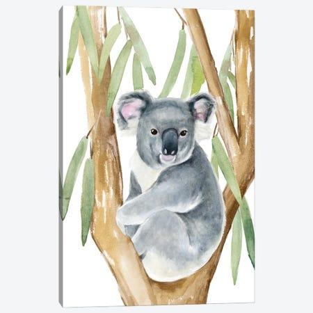 Woodland Koala I Canvas Print #AWR123} by Annie Warren Canvas Print