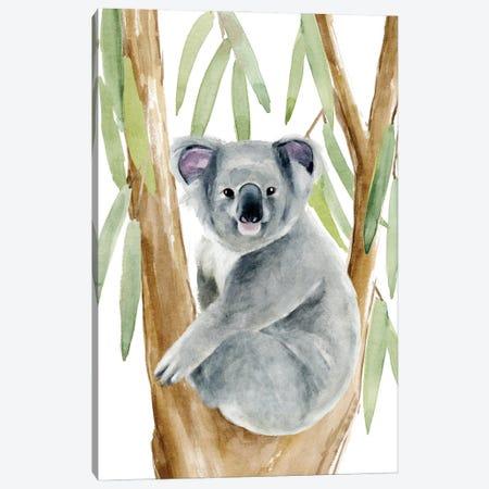 Woodland Koala II Canvas Print #AWR124} by Annie Warren Canvas Wall Art